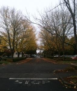 Street Crossing - cropped